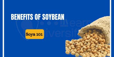 benefits of soyabean