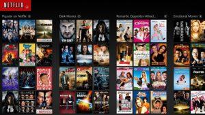 Netflix Microgenre